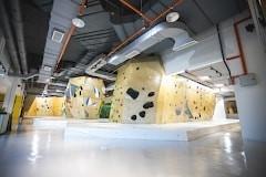 Try Rock Climbing at BUMP Bouldering