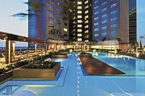 Feel it their freshness at Hilton swimming pool